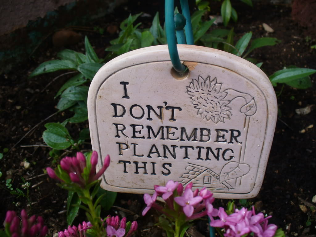 10 funny garden signs home garden design ideas articles for Landscape design quotes