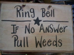 RingTheBell