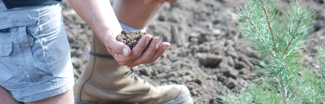 Case Field Soil Hand Crop
